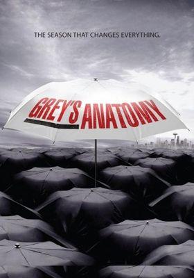 Grey's Anatomy Season 6's Poster