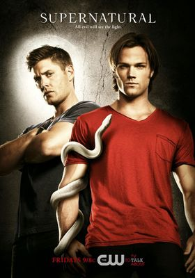 Supernatural Season 6's Poster