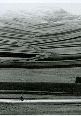 Roads Of Kiarostami's Poster