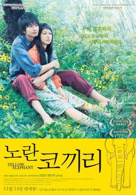 Yellow Elephant's Poster