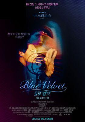 Blue Velvet's Poster