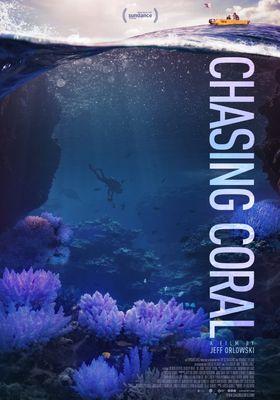 산호초를 따라서의 포스터