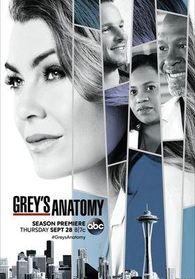 Grey's Anatomy Season 14's Poster