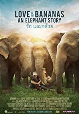 코끼리와 바나나의 포스터