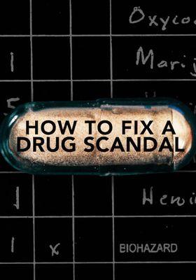 마약 스캔들의 재구성의 포스터